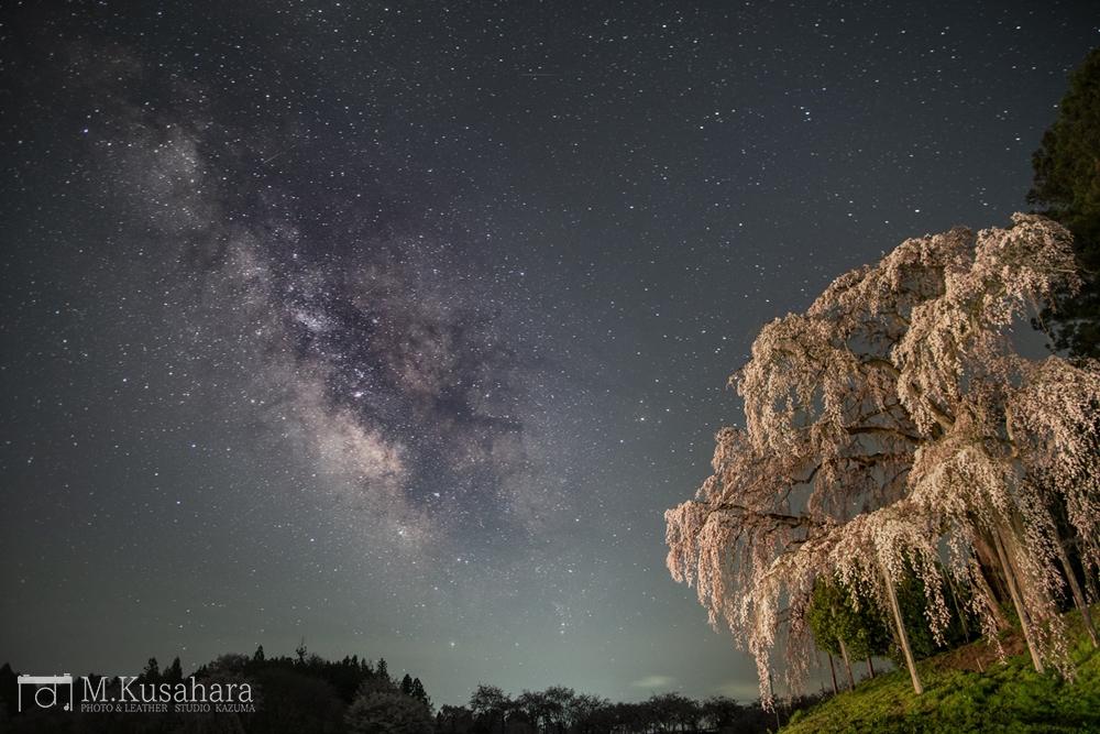 合戦場の桜と天の川